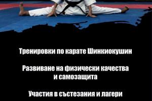 Снимка номер 3 за Тренировки по карате Шинкиокушин