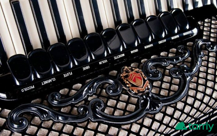 uroci-po-akordeon снимка 1