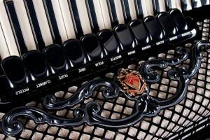 Снимка номер 1 за Уроци по акордеон