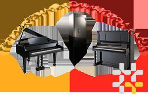 Снимка номер 1 за Пренасяне на пиана, преместване на рояли от Пиана БГ